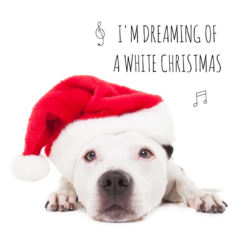 Dieren Kerstkaart Hond Staff Kerstkaarten Kaartje2go