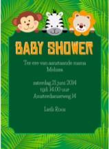 Babyshower tekst kaartje