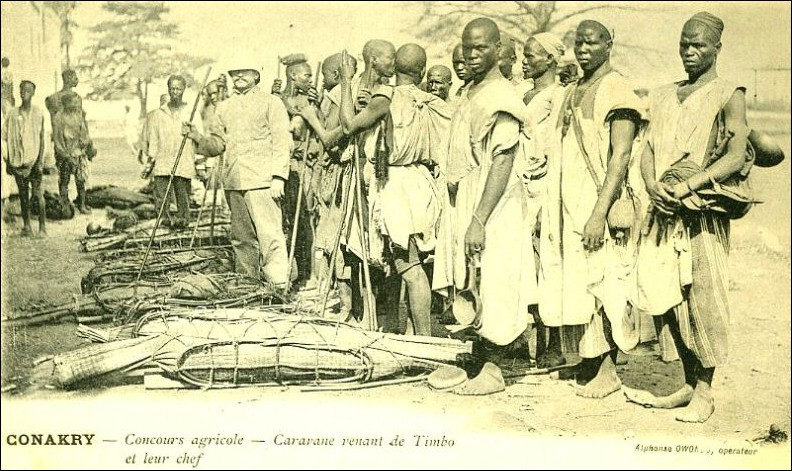 caravane-Timbo