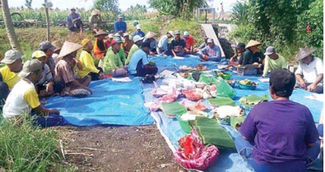 puluhan-petani-di-desa-kedungasri-dan-kedunggebang-gelar-doa-dan-kenduri-bersama-di-pinggir-sawah-kemarin