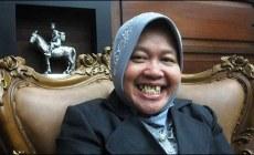 Permalink ke Gerindra, PAN, dan PKS Bakal Usung Risma di Pilwakot Surabaya 2015