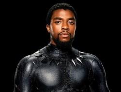 Raja Black Panther Tutup Usia, Begini Penjelasnnya!