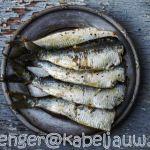 Welke vis is goed voor je cholesterol?