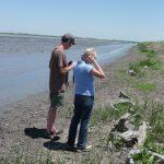 Observing Crayfish