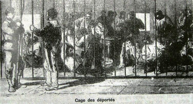 cage_deportes