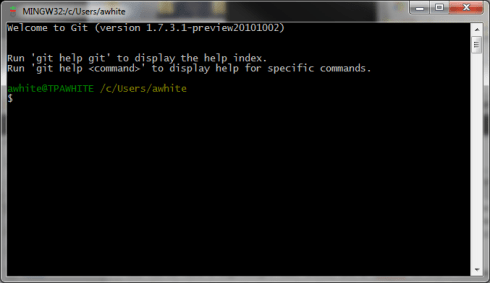 Starting screen of MSys Bash, with default command prompt