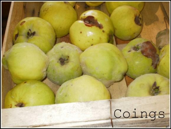 pate de coing recette-desserts-le coing-fruit
