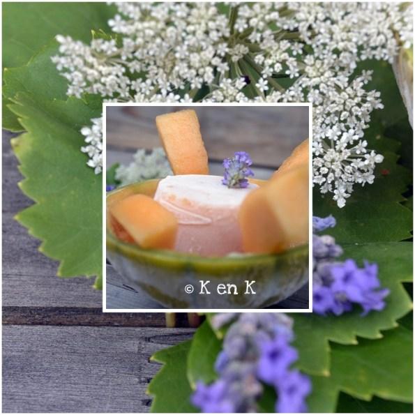 dégustation du sorbet melon