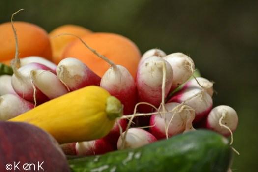 theme 24 nourriture avec légumes bio