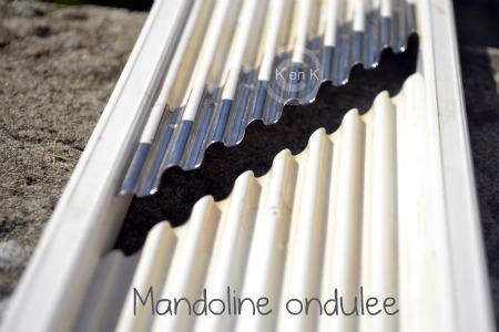 menu bento - mandoline-recette-legume-blog