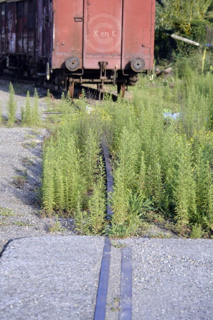 rail-train-transport-voyager