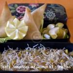 Recette du bento aux samoussas de saumon avec des nouilles de riz aux légumes