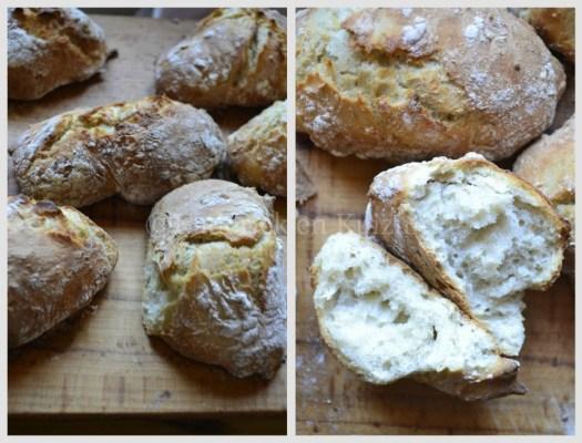 Recette des petits pains sans pétrissage avec une farine bio