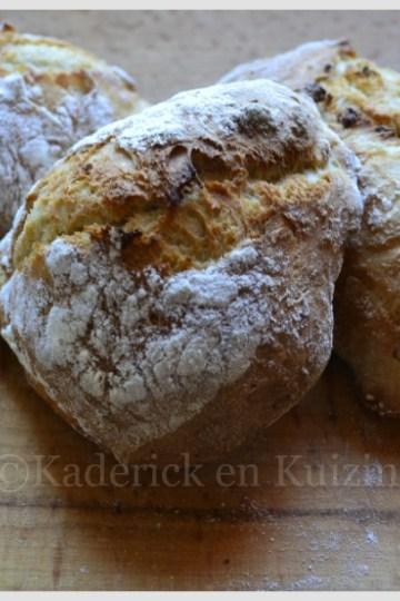 Recette des petits pains sans pétrissage à la farine bio