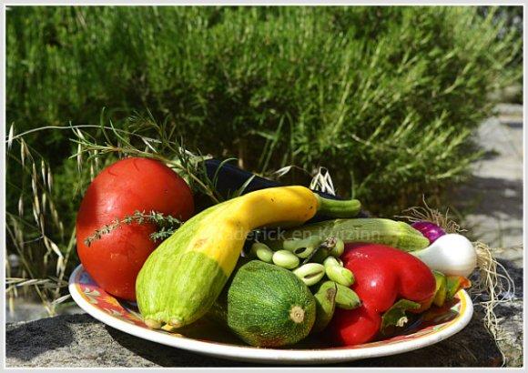 Plat de légumes du soleil dans mon jardin avec aubergine, courgette, tomate, fève, poivron pour une cuisine Italienne
