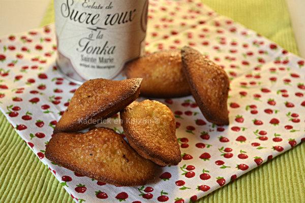 Recette des madeleines sucre à la fève tonka de la marque Terre exotique® - Kaderick en Kuizinn©