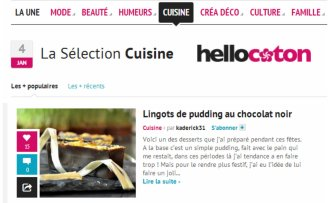 Selection Cuisine Hellocoton lingots pudding chocolat