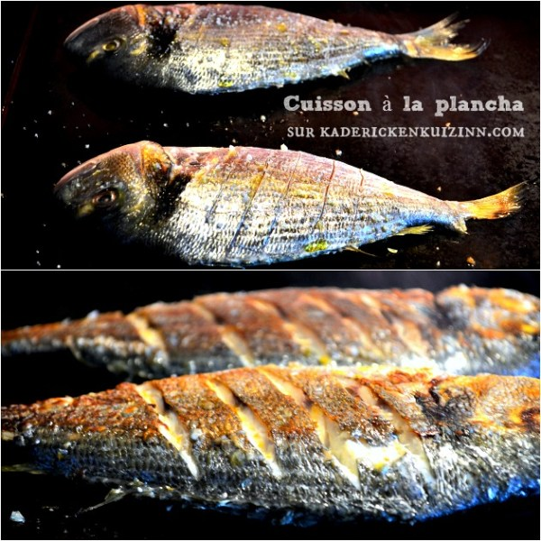 Daurade plancha ou dorade sauvage grillée à la plancha sauce bordelaise