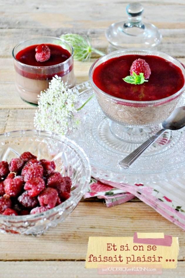 Creme dessert - Recette creme végétale au chocolat noir et framboises bio