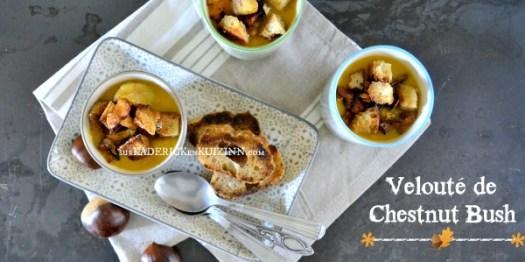 Veloute potimarron - Recette chestnut bush bio girolles, cèpes et marrons