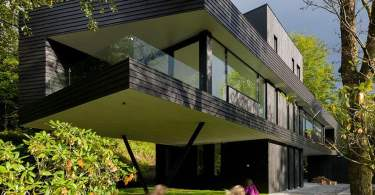 clad in stained dark wood, modern villa interior design, modern villa designs plan, modern villa dwg,