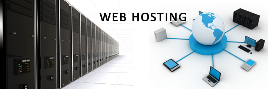 shared and dedicated web hosting,