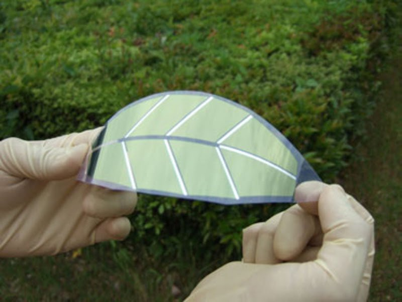 Artificial Leaves Act as Solar Cells, Imitate Nature