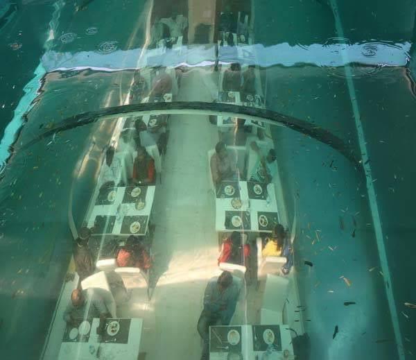 underwater restaurant In ahmedabad,