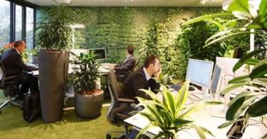 Office Interior Design Ideas,