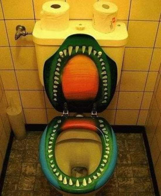 Crazy Toilet Seat Idea with Lebanese water closet