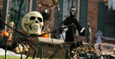 halloween decorations,