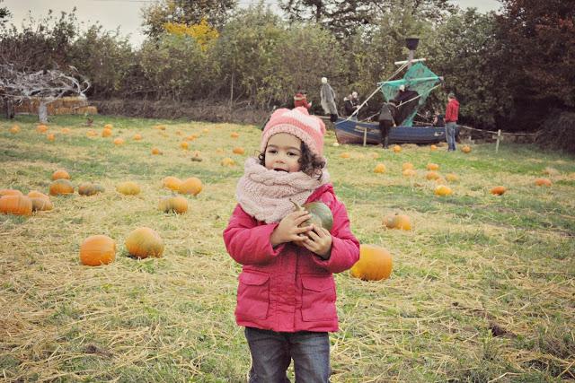 Ladyrath Pumpkin Patch – Fazenda de Abóbora na Irlanda
