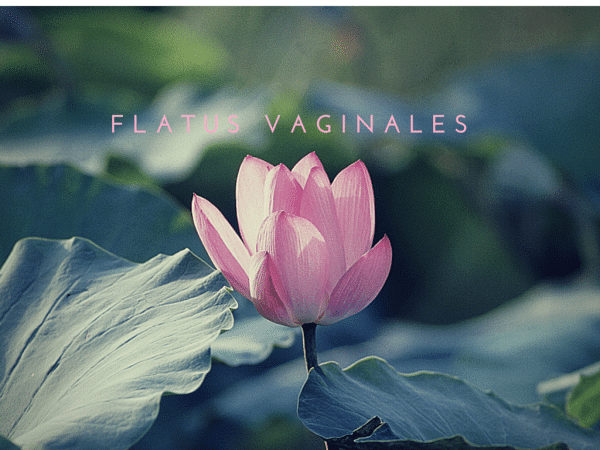 Let´s talk about: Flatus Vaginales
