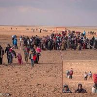 La historia del niño que viajaba solo a través del desierto 'Desmentida'