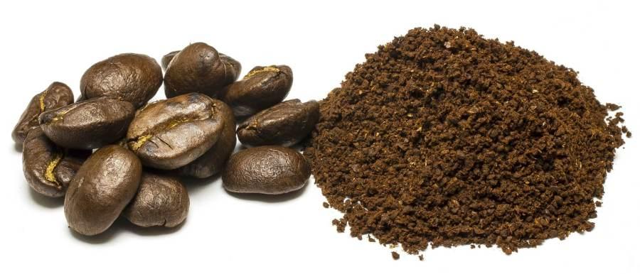 filterkaffeemaschine test