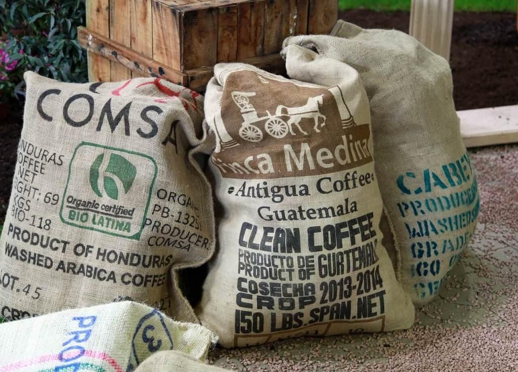 kaffeesorte und art