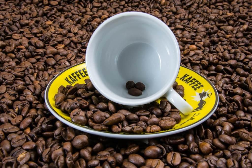 kaffee fakten header