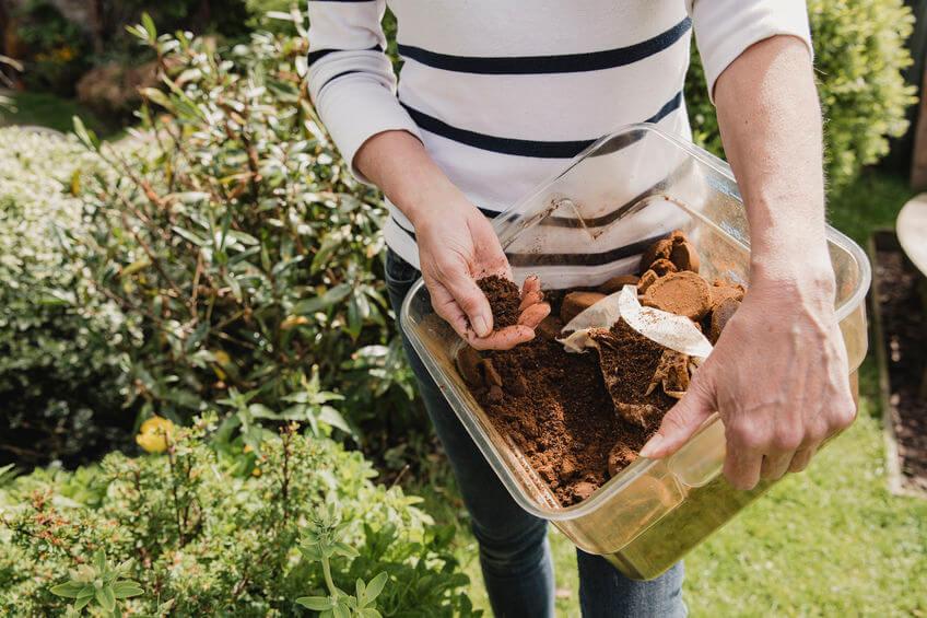 kaffeesatz kompostieren