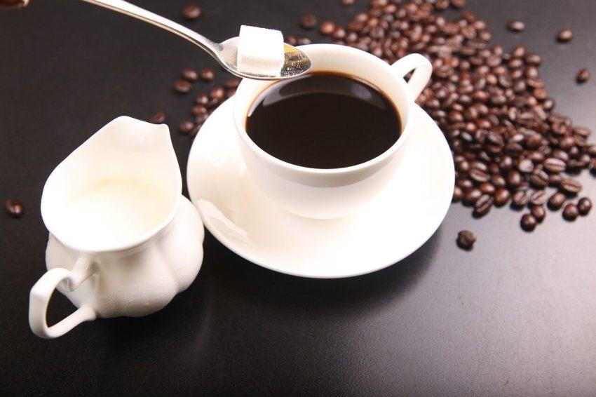 kaffeebohnen frisch