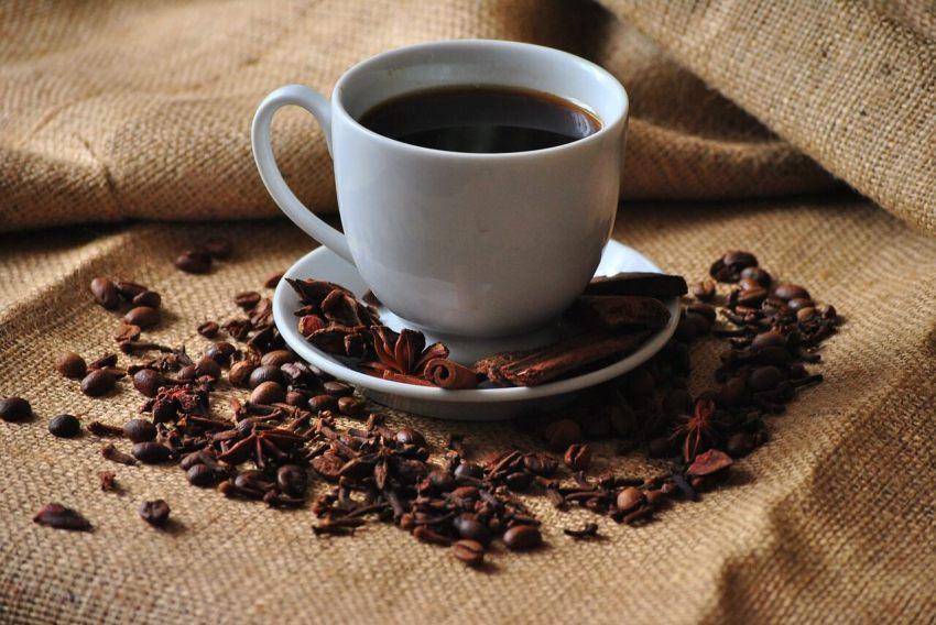 kaffee aus honduras test