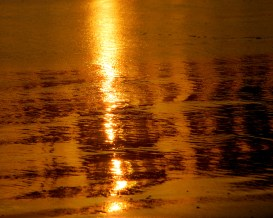 """Abstract streams of gold."" Photo: Jason Tockey. Site: jstimages.wordpress.com"