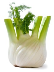 Anise or fennel. Source: sggwaser.ch