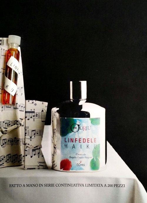Linfedele Haiku sample and artwork. Photo: my own.