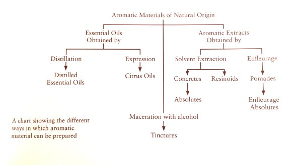 Chart by Julia Lawless in her book. Photo: my own.