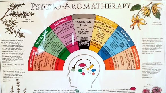 Part of the Tisserand Psycho-Aromatherapy Chart. Photo: my own. (Click on image to expand in a new window.)