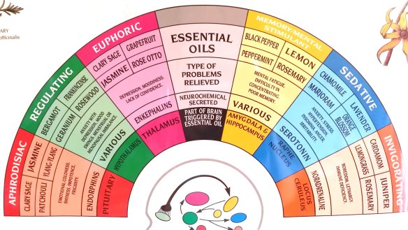 Close-up of part of the Tisserand Psycho-Aromatherapy Chart. Photo: my own. (Click on image to expand in a new window.)