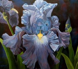 """Blue Iris"" by Alfred Ng at Fine Art America. (Direct website link embedded within.)"