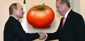 Rusya'nın fendi domatesi yendi!
