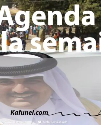 L'émir du Qatar cheikh Tamim ben Hamad al-Thani
