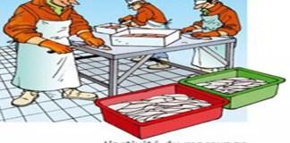 Activité du mareyage - Aide au repérage des risques professionnels